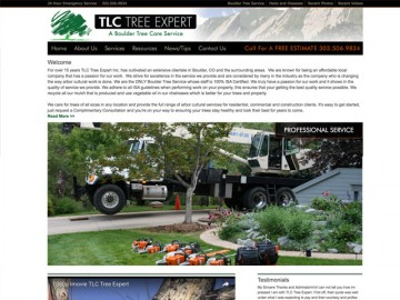 TLC Web Site Design